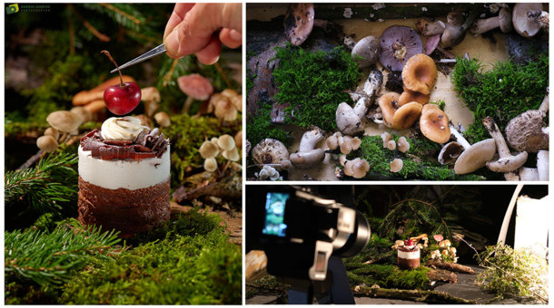 Foraged Fungi for Food Shoot